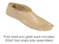 Foot shell and glide sock